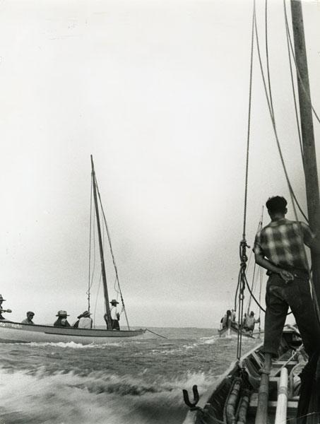 Botes baleeiros a reboque